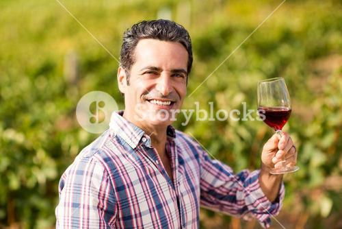 Portrait of smiling male vintner holding a glass of wine