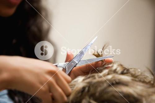 Close up of feminine hands cutting hair