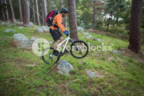 Male mountain biker riding bicycle in the forest