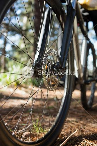Close-up of mountain bike front wheel