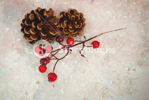 Pine cone and red cherry on snow