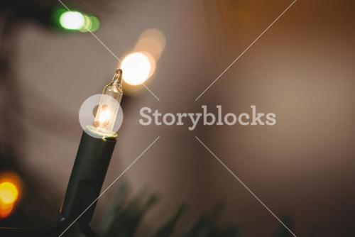 Close-up of fairy light