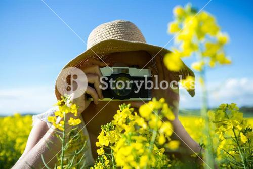 Woman taking picture from camera in mustard field