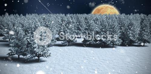 Composite image of digitally generated image of trees on snowy field