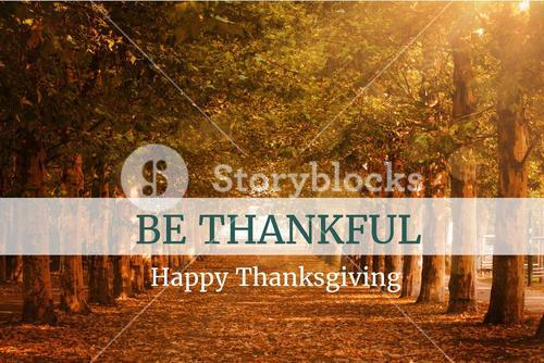 Thanksgiving Message On Wooden Background Design