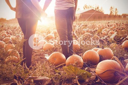 Couple at the pumpkin patch