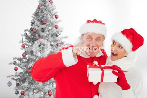 Couple in santa hat holding a gift box near christmas tree