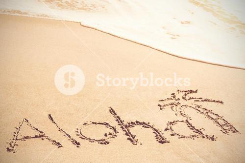 Aloha text written on sand with palm tree