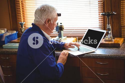 Horologist working on laptop