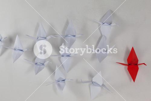 Paper cranes arranged together