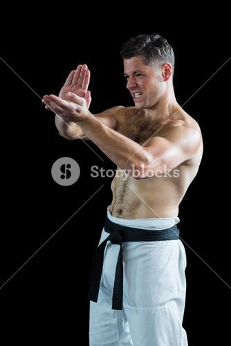 Karate fighter performing karate stance