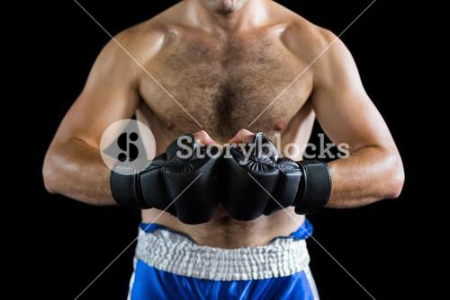Boxer performing boxing stance