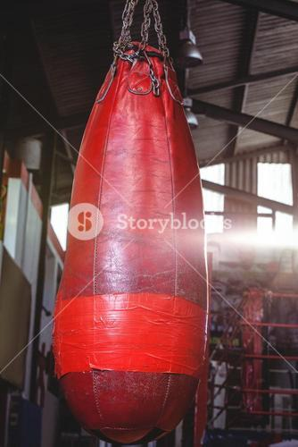 Close-up of punching bag hanging