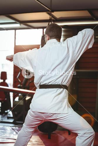 Rare view of karate player performing karate stance