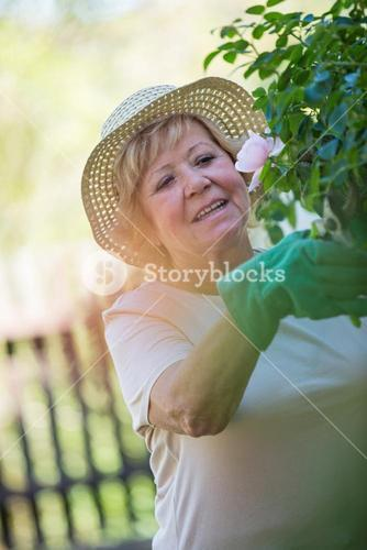 Senior woman trimming plants with pruning shears