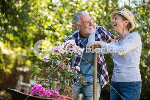 Senior couple interacting with each other in the garden