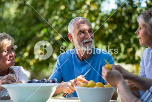 Senior couples removing seeds of apricot fruits in garden