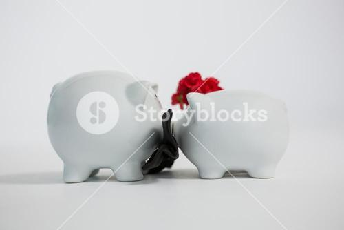 Two piggy bank kissing each other