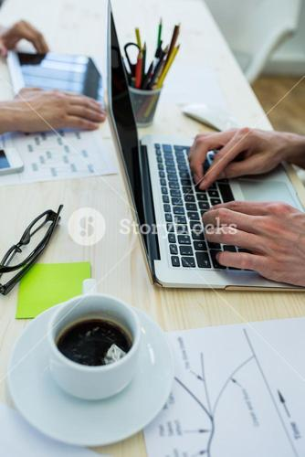 Business executive using laptop at his desk