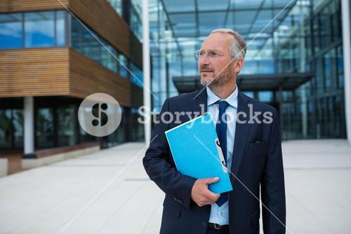 Businessman carrying an official file