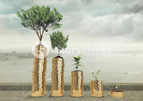 Tree planted on money against city background