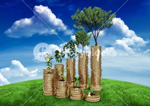 Tree planted on money against nature baackground