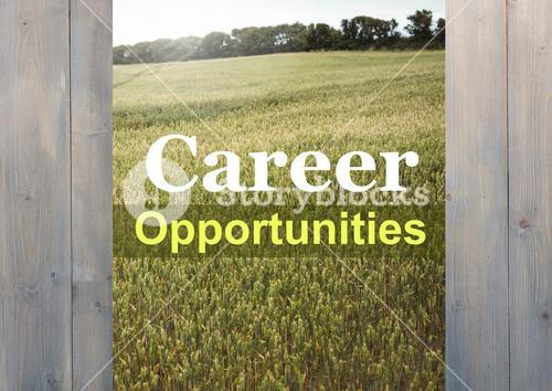 Composite of career opportunities