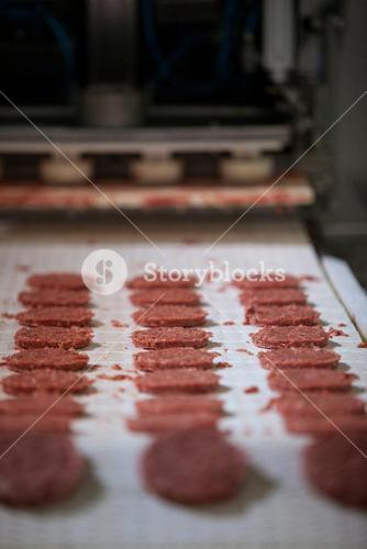 Raw meat patties on assembly line at meat factor