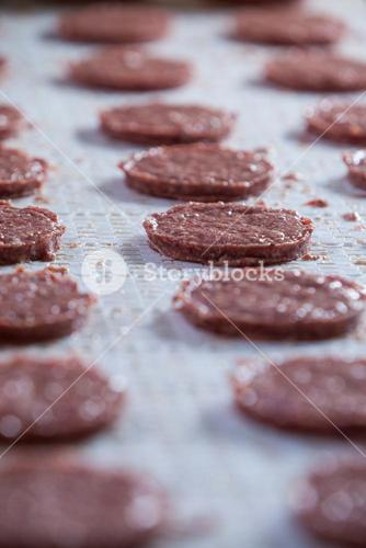 Raw meat patties on assembly line
