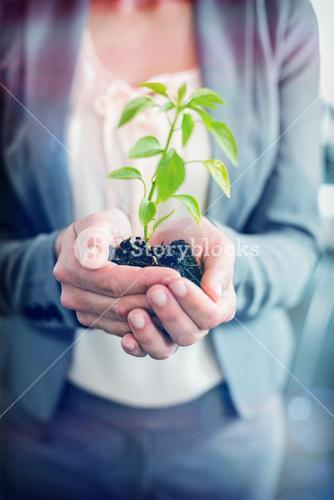 Midsection of businesswoman holding plant