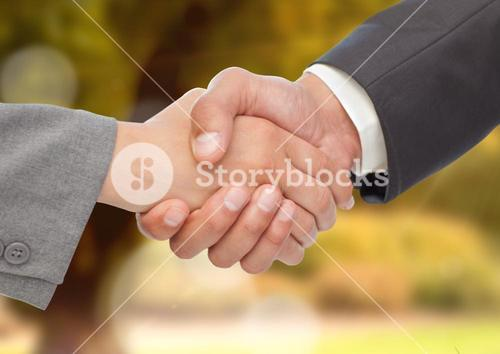 Business executives shaking hands against blurr background