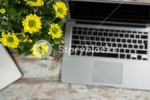 Laptop and flower vase