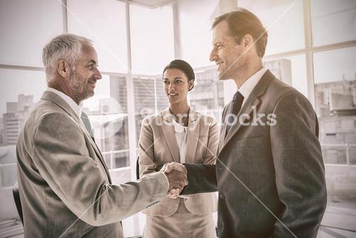 Businesswoman introducing colleagues together