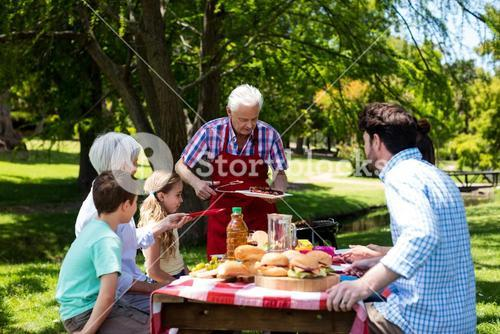 Senior man serving barbeque to family in park
