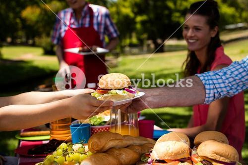 Father passing plate of burger to son in park