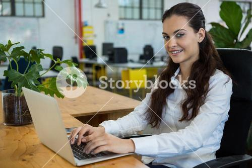 Female business executive sitting at desk with laptop