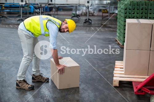 Portrait of factory worker picking up cardboard boxes