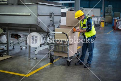 Factory worker loading cardboard boxes
