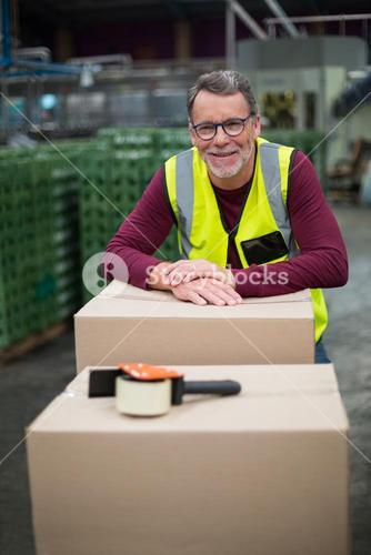 Portrait of factory worker with cardboard boxes on trolley