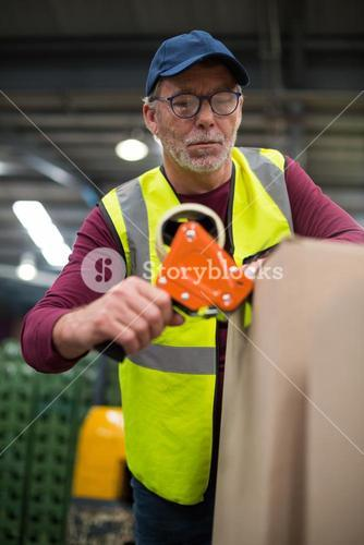 Factory worker sealing cardboard boxes