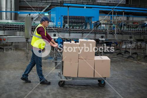 Male factory worker pulling trolley of cardboard boxes