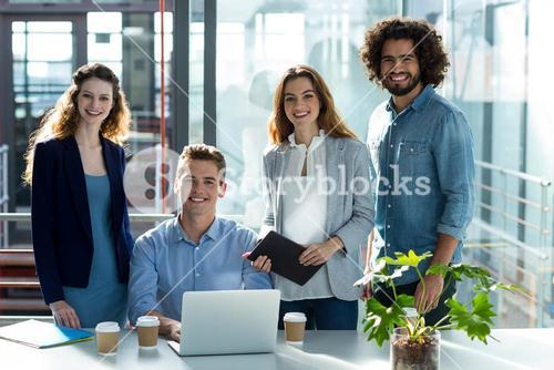 Portrait of business executives in office