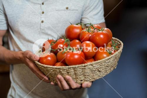 Vendor holding a basket of tomatoes
