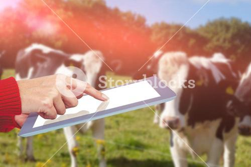 Composite image of mid section of a woman using her tablet against rural scene