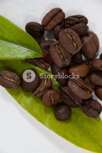 Roasted coffee beans with coffee leaves