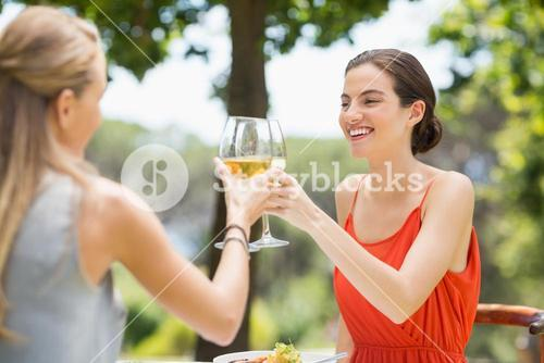 Friends toasting glasses of wine in a restaurant
