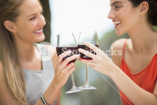 Happy friends toasting wine glasses