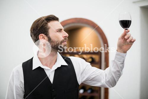 Male waiter holding wine glass