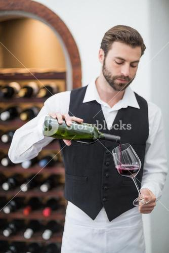 Male waiter pouring wine in wine glass