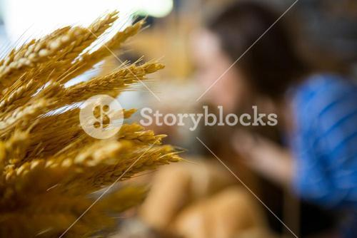 Close-up of ears of wheat at counter